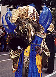 Venetian reveler in gold face